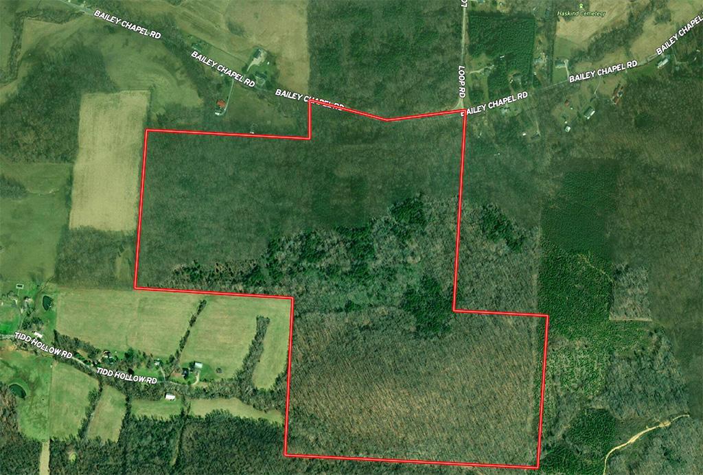 00 Bailey Chapel Road, Piketon, Ohio 45661, ,Land/farm,For Sale,Bailey Chapel,220025387