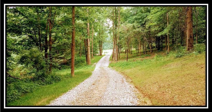 2998 Mainesville Road, Junction City, Ohio 43748, ,Land/farm,For Sale,Mainesville,220025725
