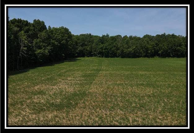 5650 Twp Road 191, Marengo, Ohio 43334, ,Land/farm,For Sale,Twp Road 191,220025806