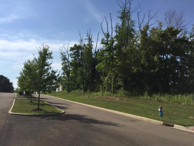 1826 Bent Creek Drive, Lancaster, Ohio 43130, ,Land/farm,For Sale,Bent Creek,220030776
