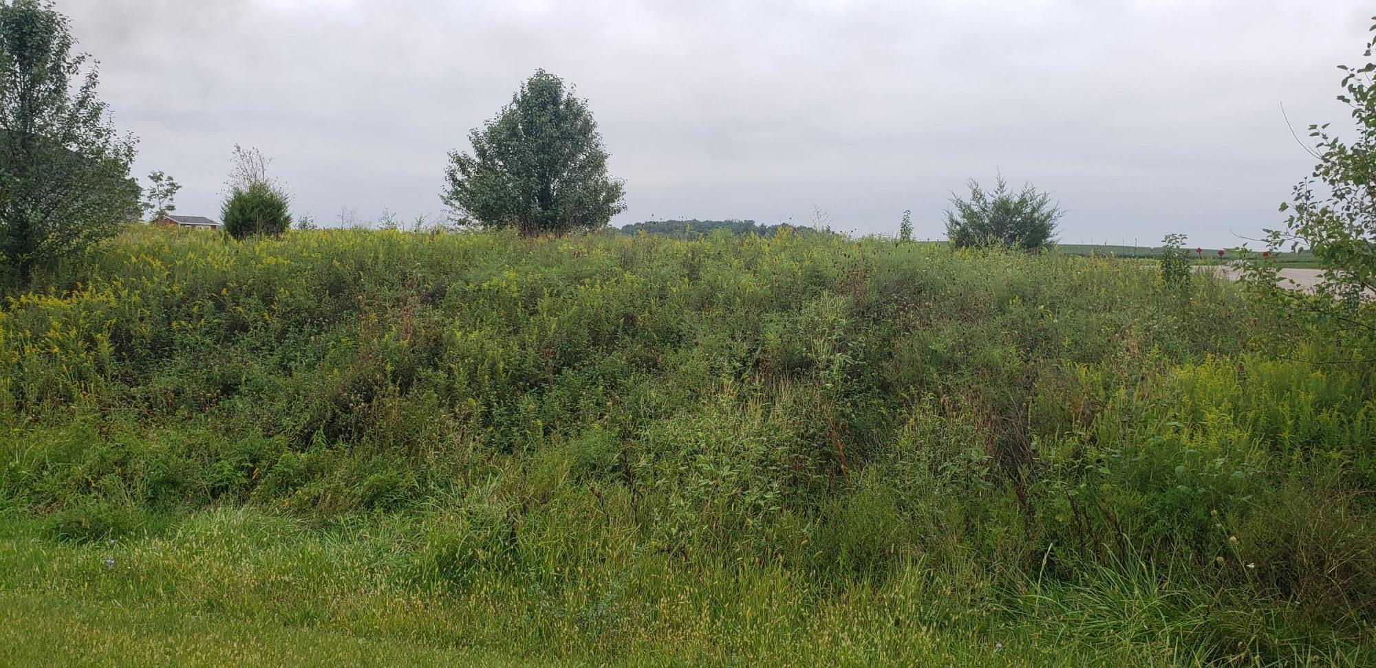 9407 Hocking Run, Canal Winchester, Ohio 43110, ,Land/farm,For Sale,Hocking,220031909