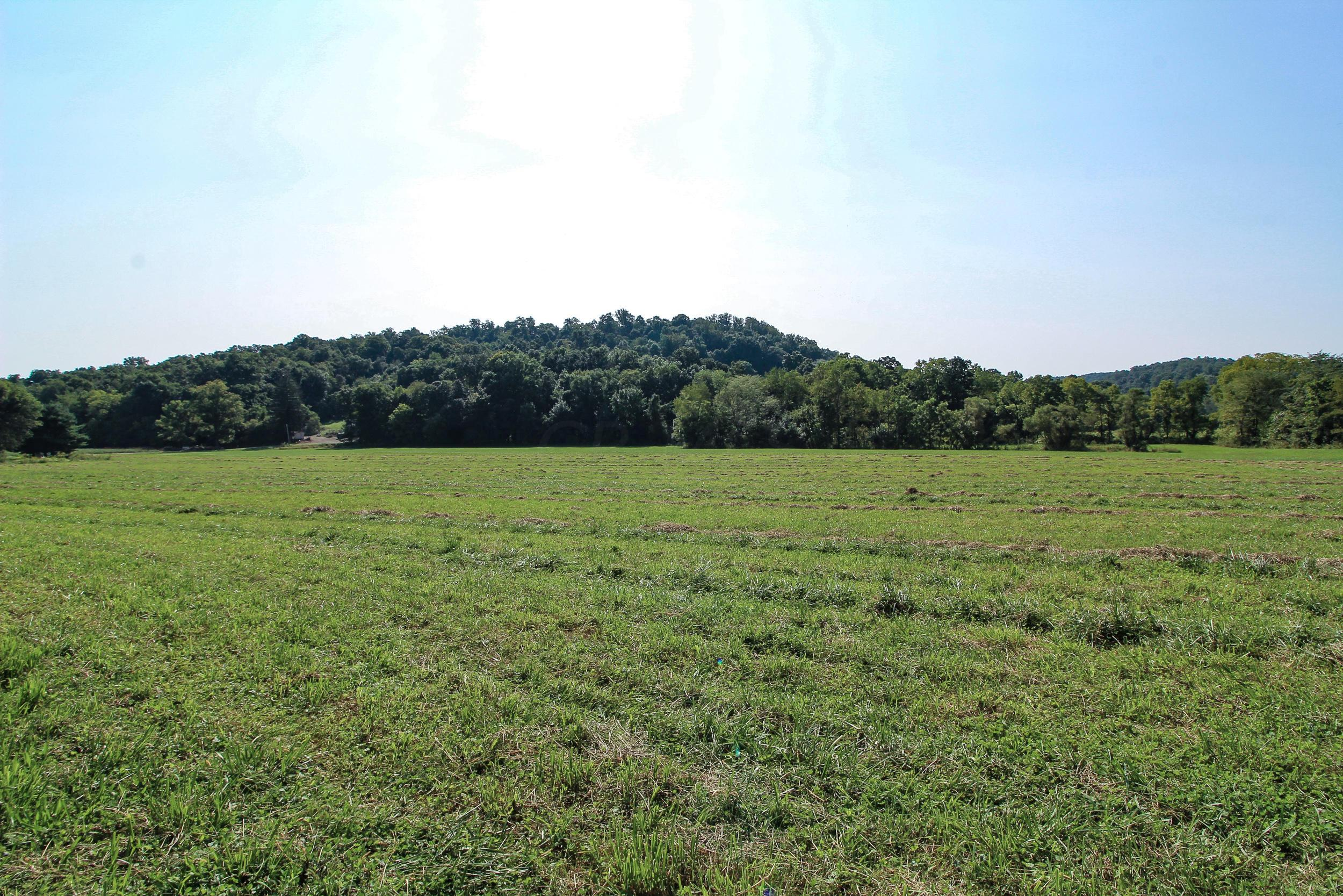 24549 Township Road 399, Coshocton, Ohio 43812, ,Land/farm,For Sale,Township Road 399,220032221