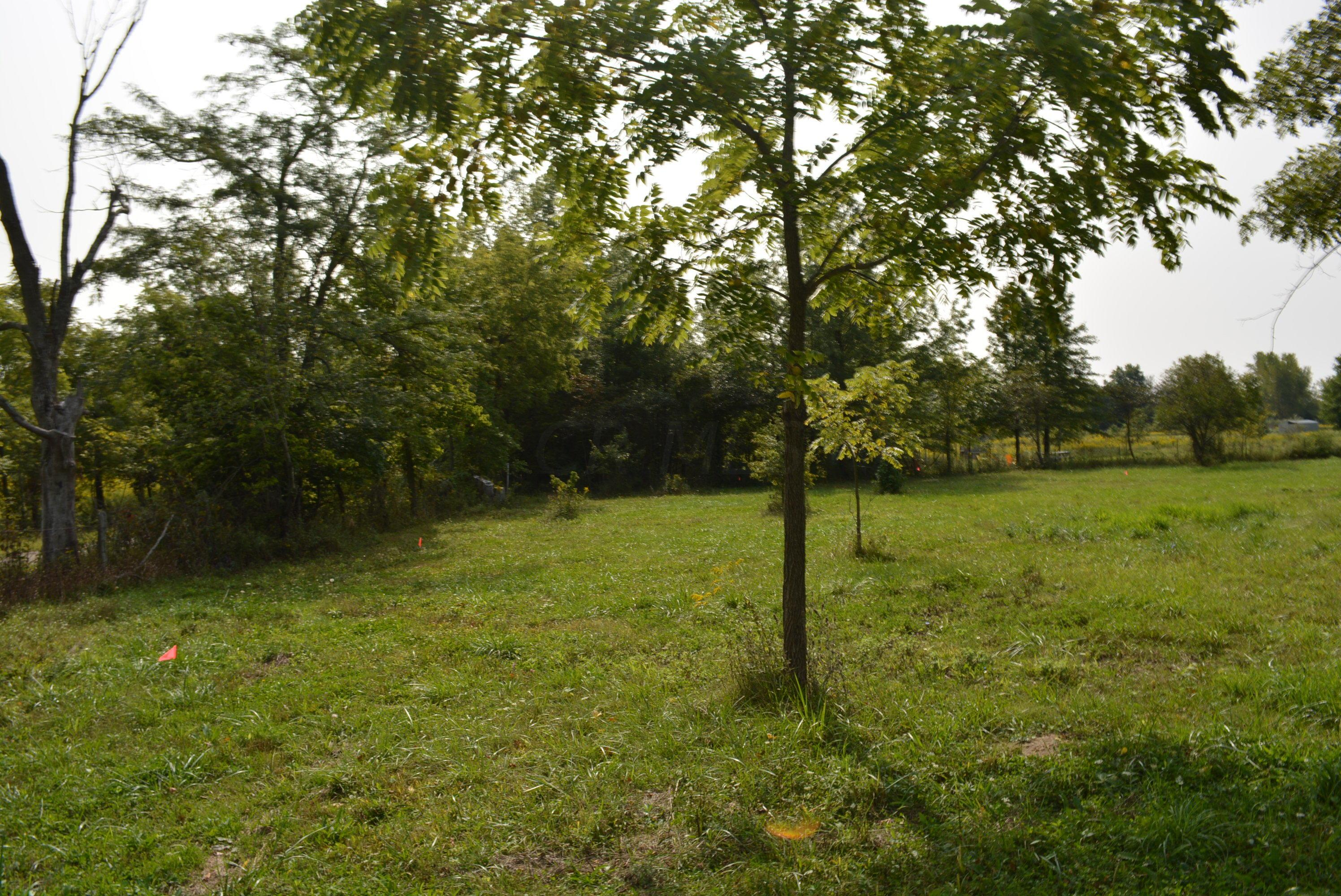 22431 Buck Run Road, Milford Center, Ohio 43045, ,Land/farm,For Sale,Buck Run,220032327