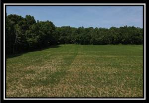 Undefined image of 5652 Township Road 191, Marengo, OH 43334