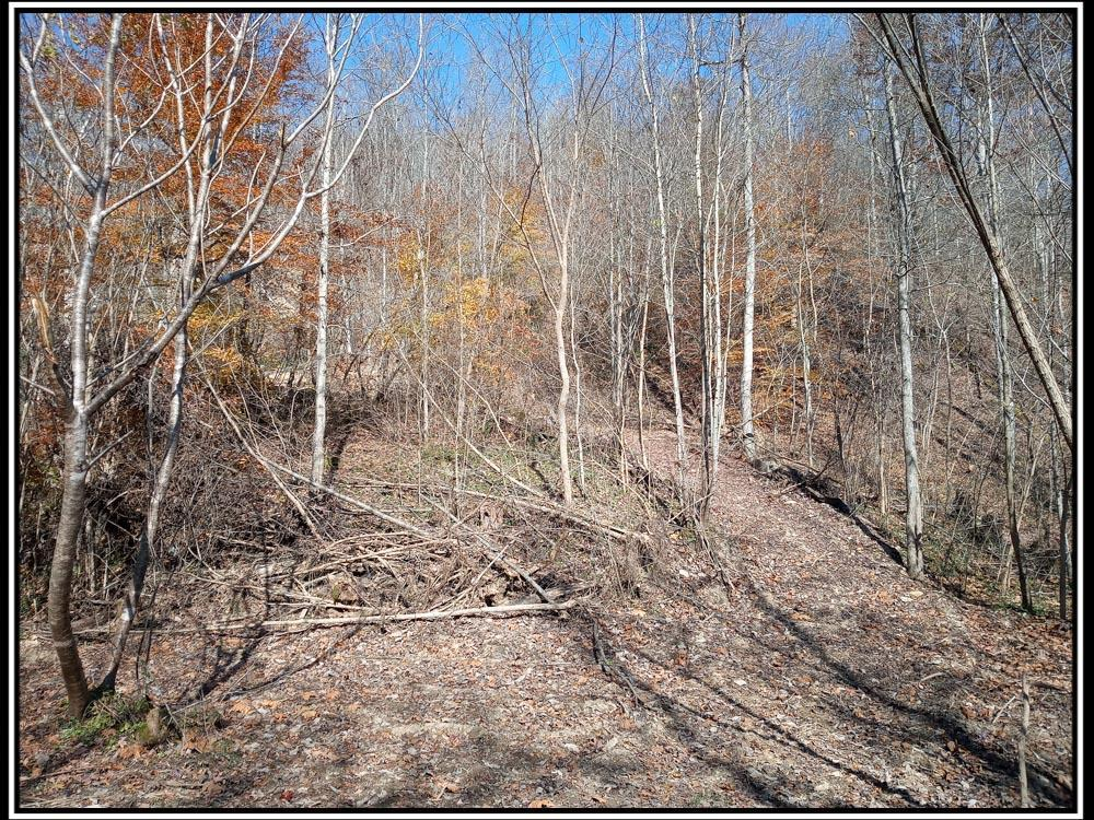 0 Lower Twin Creek Road, Stout, Ohio 45684, ,Land/farm,For Sale,Lower Twin Creek,220040938