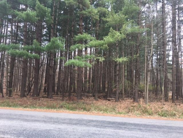 7326 State Route 19, Mount Gilead, Ohio 43338, ,Land/farm,For Sale,State Route 19,220040743