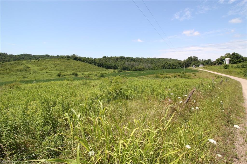 0 Perine- 4D Road, Zanesville, Ohio 43701, ,Land/farm,For Sale,Perine- 4D,221001074