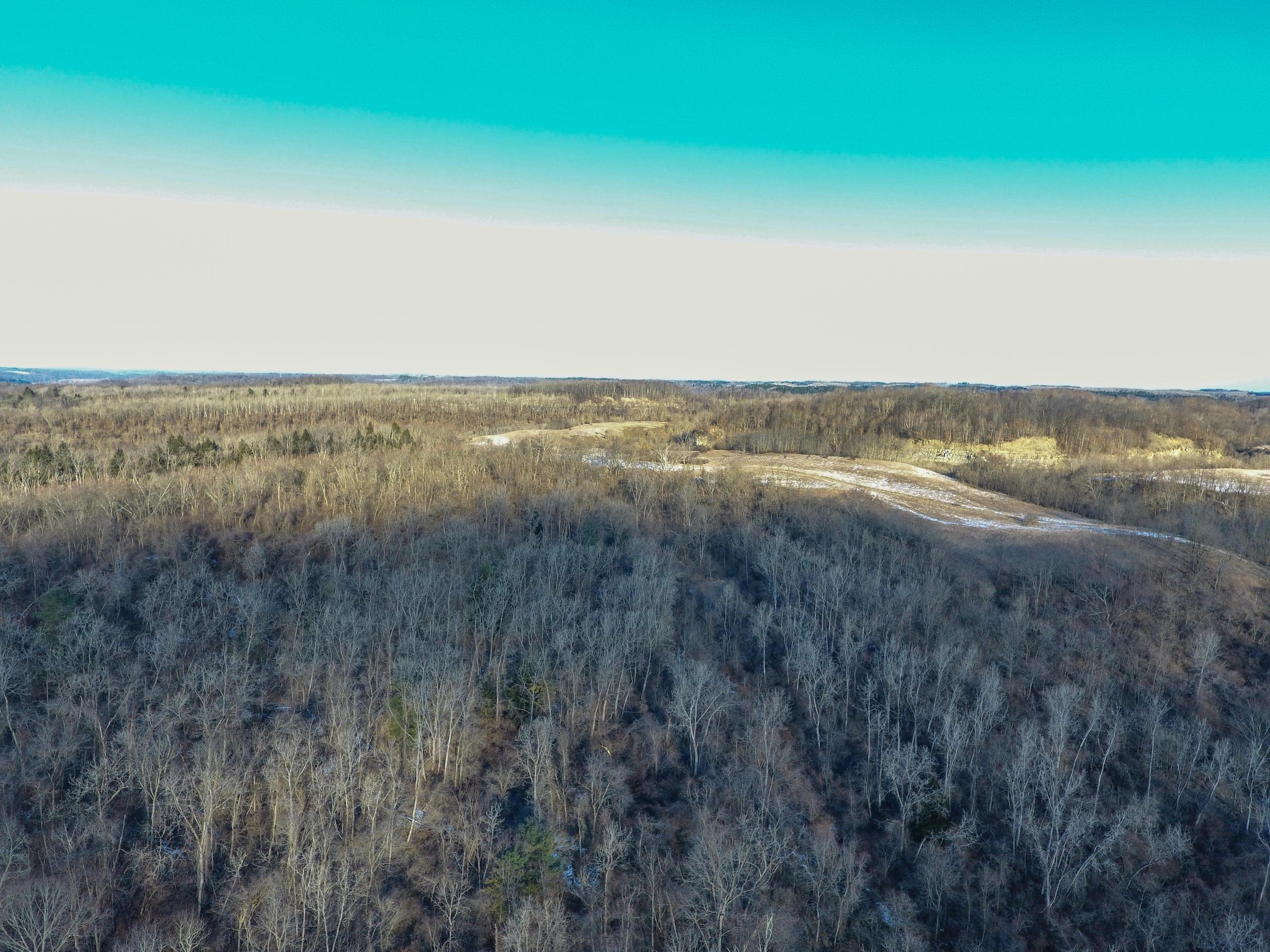 0 Jockey Hollow Road, Flushing, Ohio 43977, ,Land/farm,For Sale,Jockey Hollow,221003108