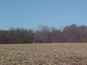 Undefined image of 0 Blackgold, New Lexington, OH 43764