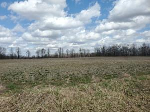 Undefined image of 0 County 124 Road, Tract 3, Cardington, OH 43315