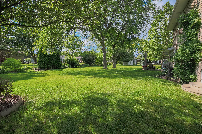 Backyard- 6