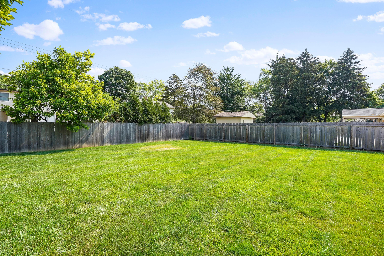Oversized Backyard