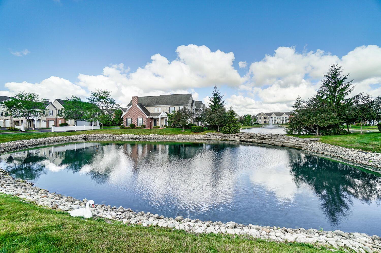 Neighborhood ponds