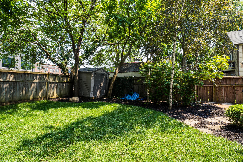 Back Yard/Shed