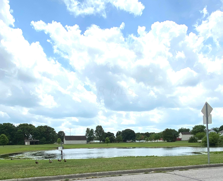 shared community pond