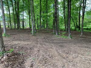 Undefined image of 0 Oak Leaf Lane, Rushville, OH 43150