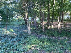 Undefined image of (Lot 3)115 King Avenue SW, Pataskala, OH 43062