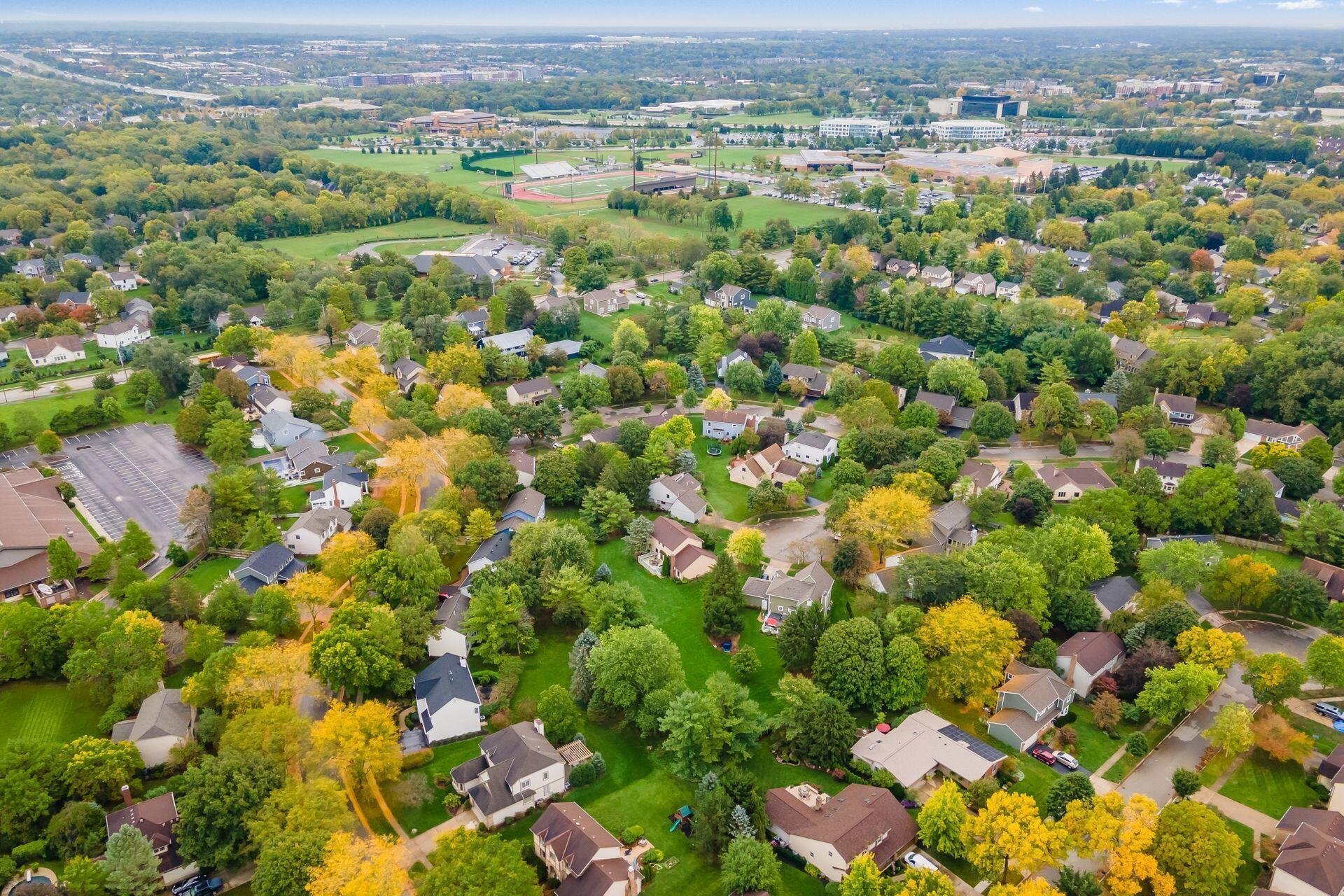 Drone of Neighborhood