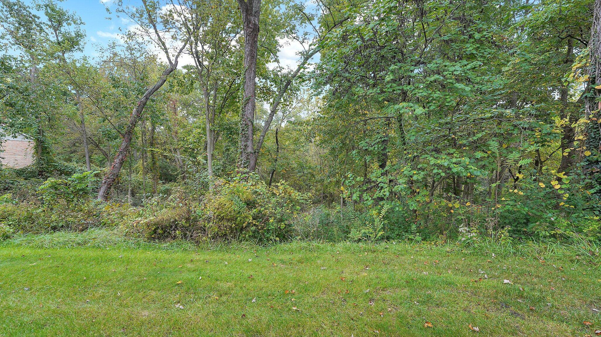 50-web-or-mls-strathaven-ct