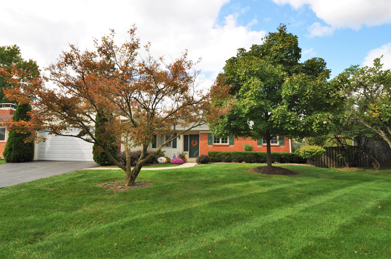 Beautiful yard & landscaping!