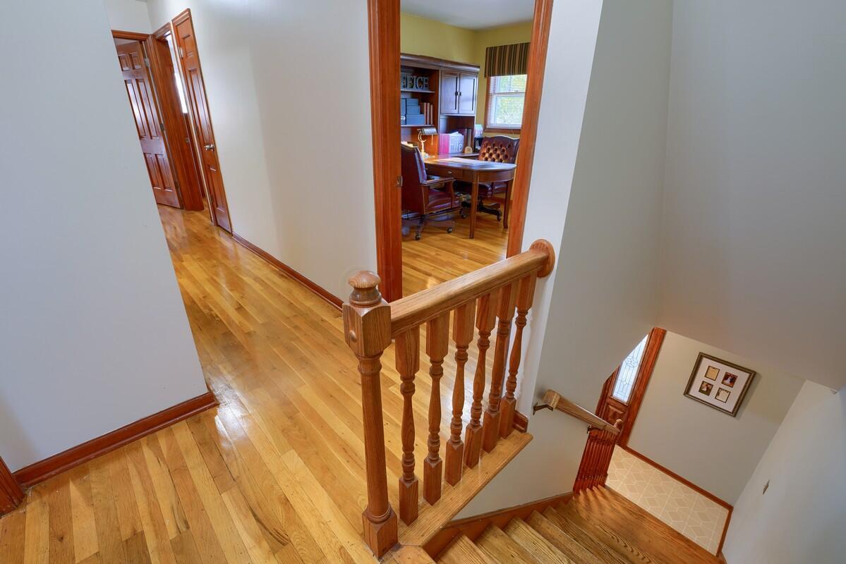 Hardood floors