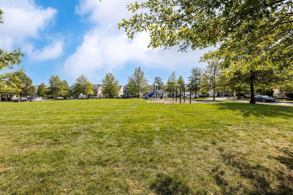 Greenspace & Park