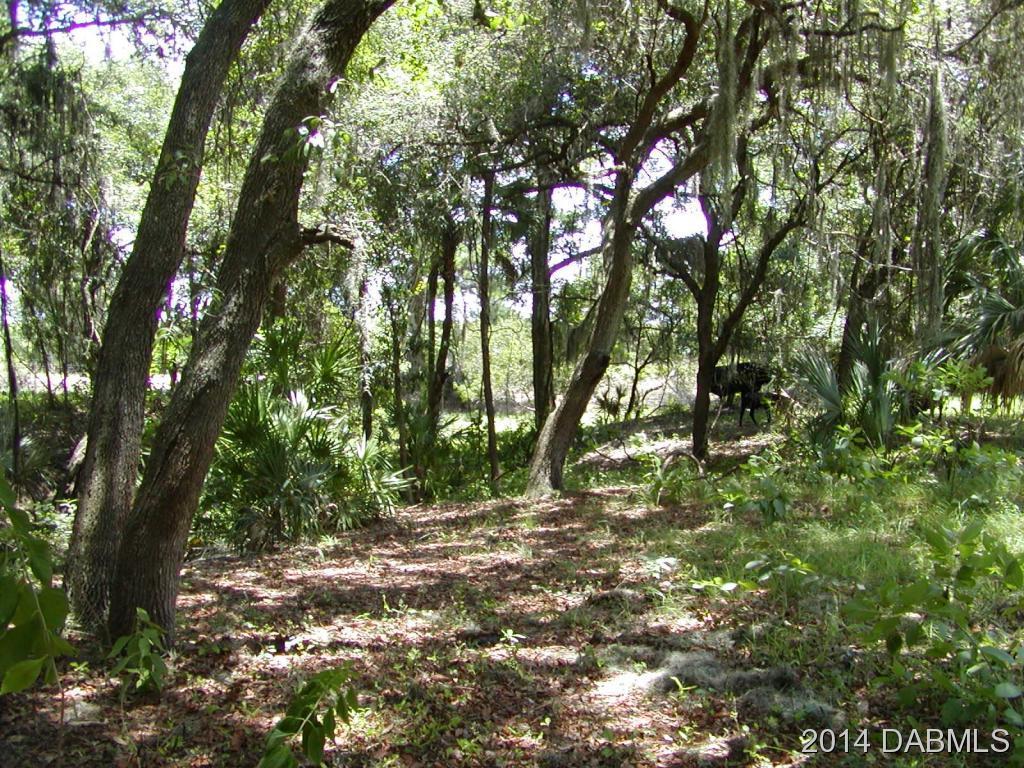 Image 3 For 650 Fort Florida Road
