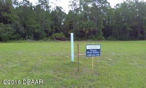 45 CHRYSANTHEMUM Drive, Ormond Beach, FL 32174