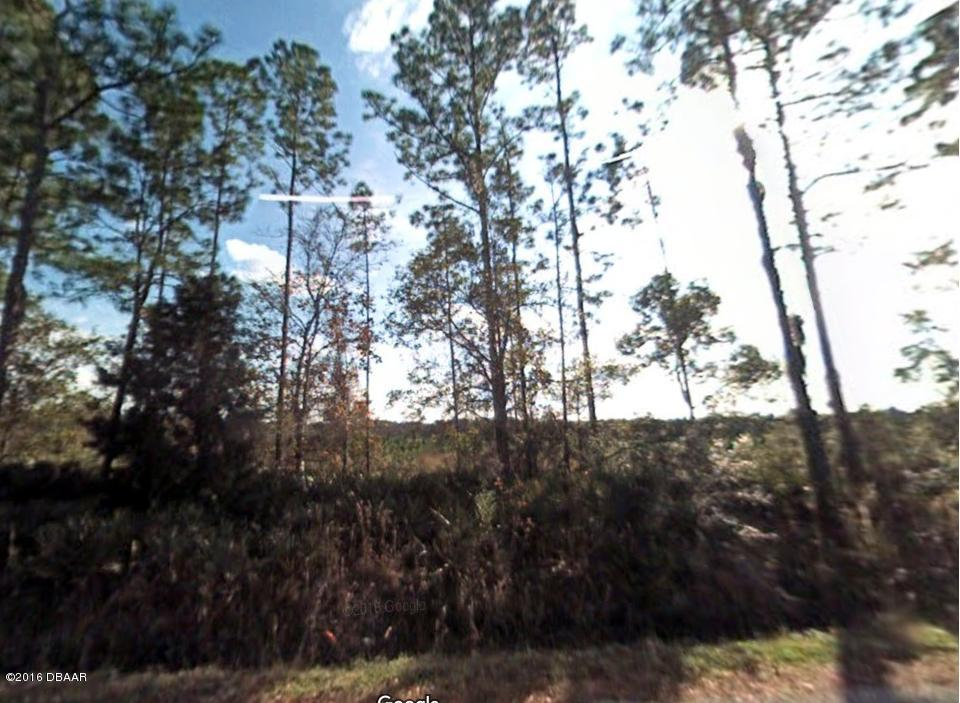 0 Shell Harbor Road, Pierson, FL 32180