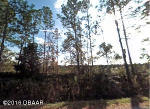 0 SHELL HARBOR Road, Pierson, FL 32180