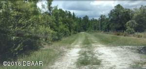 721 OLD BUBBLY Road, Pierson, FL 32180