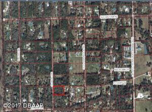 2421 Guava Drive, Port Orange, FL 32128