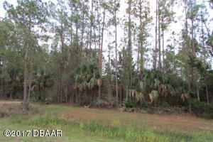 3017 County Road 304, Bunnell, FL 32110