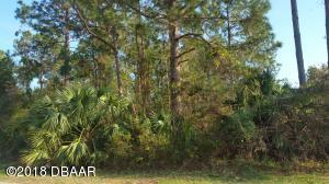 12 WHITE DEER Lane, Palm Coast, FL 32164