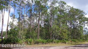 3658 Plantation Drive, Ormond Beach, FL 32174