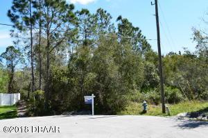 13 Lee Place, Palm Coast, FL 32137