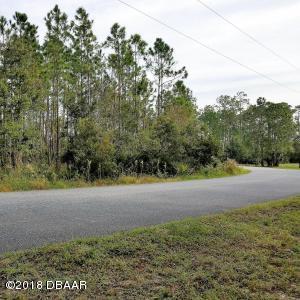 3230 Pheasant Trail, Mims, FL 32754