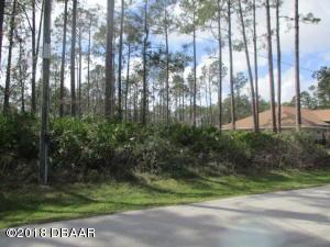 6 Lloshire Path, Palm Coast, FL 32164