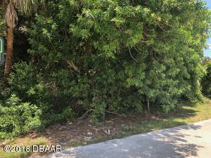 25 Oak Tree Drive, New Smyrna Beach, FL 32169