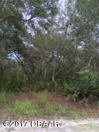1005 Seminole Bear Trail, Pierson, FL 32180
