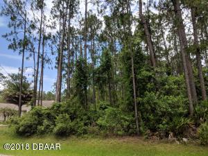36 Rickenbacker Drive, Palm Coast, FL 32164