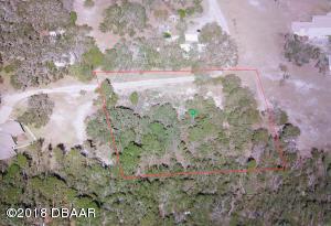 0 Williams Lane, Port Orange, FL 32127