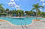 Tranquil swimming pool environment