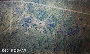 521 Volusian Forest Trail, Pierson, FL 32180