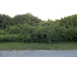 6440 River Road, New Smyrna Beach, FL 32169