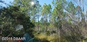 Wooded Lot 1