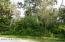 0 Lime Tree Drive, Edgewater, FL 32141