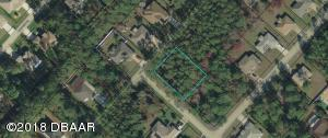 126 Ryberry Drive, Palm Coast, FL 32164