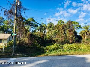 0 Fern Palm Drive, Edgewater, FL 32141