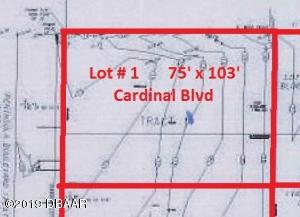 0 S Cardinal Boulevard, Daytona Beach Shores, FL 32118